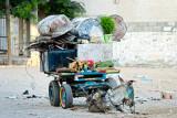 Donkey and cart - Gaza
