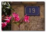 _MG_2662 village fleur.jpg