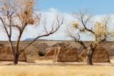 Ruins of Fort Selden