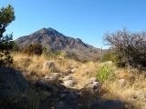 Aquirre Springs on east slopes of Organ Mountains