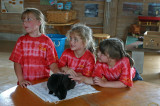 Girls playing with a rabbit on a farm visit, New England, USA