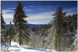 Snowshoeing on Mt. Pinos California