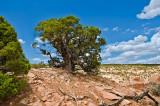 The Tsegi Canyon