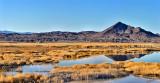 Tekopa Wetlands