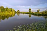 Ponds in Stary Lubliniec
