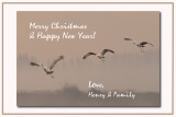 christmas e card 2007.jpg