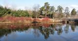 Park LandscapeApril 6, 2011