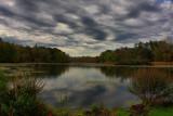 Pond Landscape in HDROctober 5, 2011