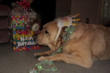 Glinda's BirthdayOctober 16, 2011