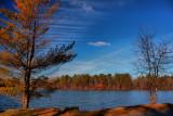Park Lake in HDRDecember 20, 2011