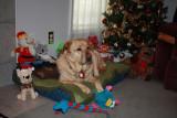 Glinda's Christmas ToysJanuary 3, 2012