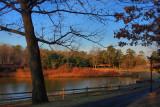 Park in the Morning in HDRJanuary 7, 2012