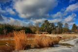 Park Pond in HDRJanuary 20, 2012