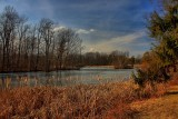 Local Pond in HDRFebruary 10, 2012