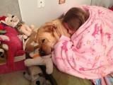 Emma and Glinda SleepingJuly 28, 2012