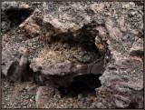 9274.Volcanic Debris
