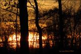 0121.SunsetColors