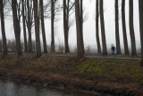 a_misty_day_in_damme