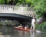 Punting on the Avon,  Christchurch  1