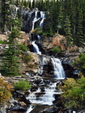Falls Along the Icefields Parkway