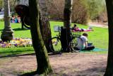 Springtime in Bamberg