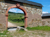 Weinberge und Tor