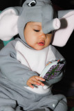 baby elephant Sabina