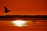 Sunset on Glenelg River