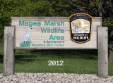 magee-marsh-port-clinton-ohio-2012