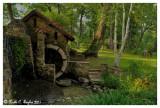 Water Wheel #2