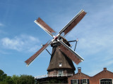 Windmill 'The Falcon'