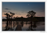 Moon Over Caddo Lake-2