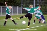 201109_WherevogelsE8 (17).jpg