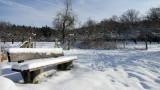 Winter im Siebengebirge
