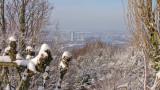 Blick vom Petersberg auf Bonn