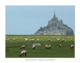 Mont Saint-Michel / Normandie