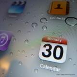 30th Jan 2012 - Monday