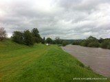 8th June 2012 - Wye rising!