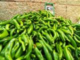 P5201511_peppers_800.jpg