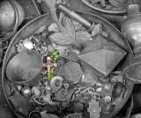 P7072308_rosary_bw_800.jpg