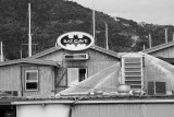 Tortola-038