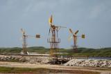 Bonaire 2012-17