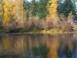 Little River Pond fall colours 2a.jpg
