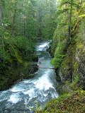 Little Qualicum River 5a.jpg