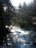 Little Qualicum River 1a.jpg