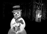 frost f bw cr.jpg