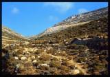 Amorgos-23.jpg