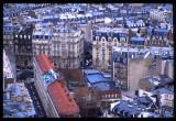 PARIS-202