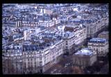 PARIS-205