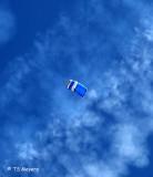 Wings of Blue parachutist